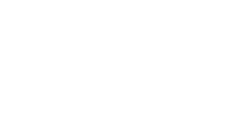 hermes P